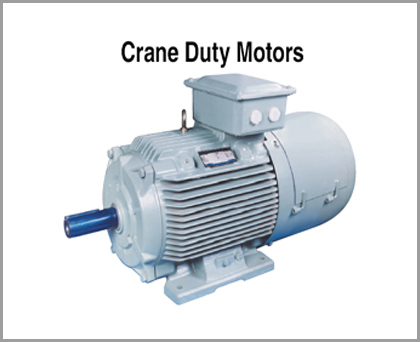 Crane Duty Motors, Slip Ring Crane Duty Motors, Squirrel